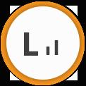 Icon level 2